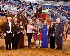 Carson Clydes winning the Royal Winter Fair 2014