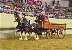 Winner of Ladies Team Class at Clydesdale Nationals along with Best Lady Driver 2014 - Margo Carson